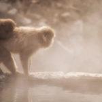 【最新版】九州の温泉おすすめランキング2020!TOP5はこれだ!